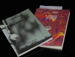 STELLA UMANA – con Sarah Menefee – Brescia 26/09/2014